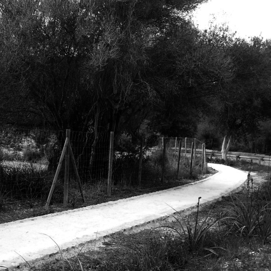 pavimentos-estabilizados-con-cal_ok2